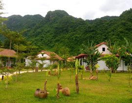 Chay Lap Farmstay & Resort