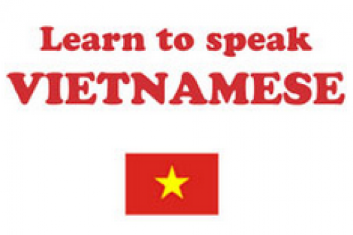 Quick guide to learn some Vietnamese